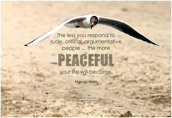 The less you respond to rude, critical, argumentative people ... the more peaceful your life will become. - Mandy Hale #innerpeace #peace #qotd #quote #inspirational #inspirationalquote #inspirationalwords