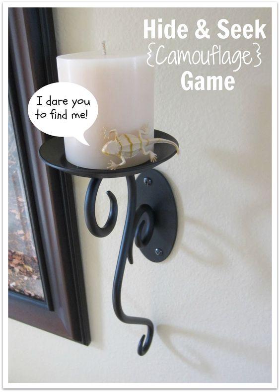 Hide & Seek Camouflage Game