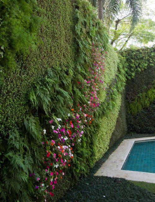 vertical garden: