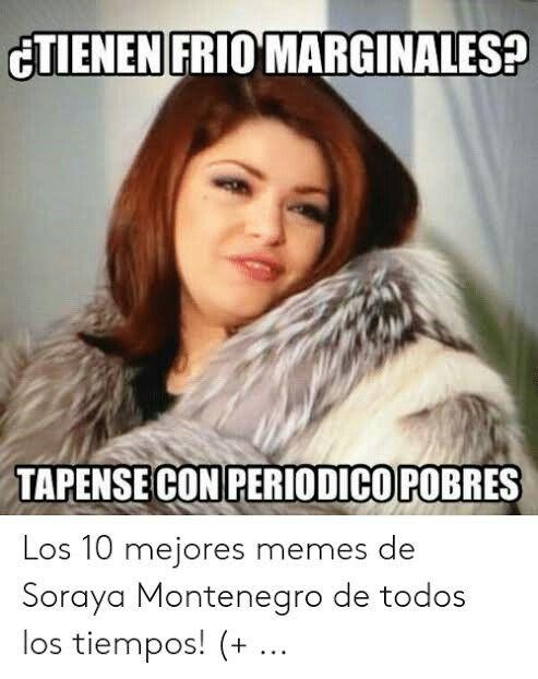 Banarse O No New Memes Humor Best Friends Funny