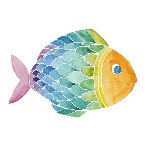 Rainbow Watercolor Fish Wall Decal Watercolor Fish Fish Drawing For Kids Fish Drawings