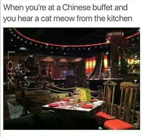 Chinese Restaurant Lost Cat Meme