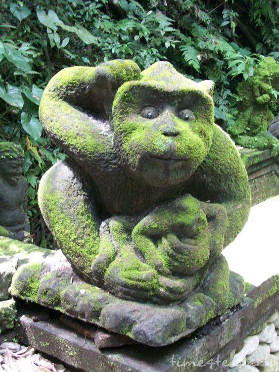 Monkey Forest 19:
