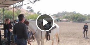 Escalada no cavalo rápido.