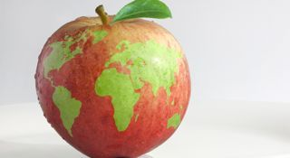 """""""Food Safety - It's a Global Issue."""" apple-globe-iphone.jpg"""
