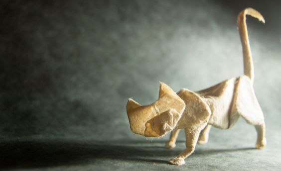 Gonzalo Origami