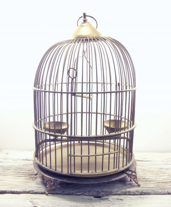 Solid Brass Bird Cage $195