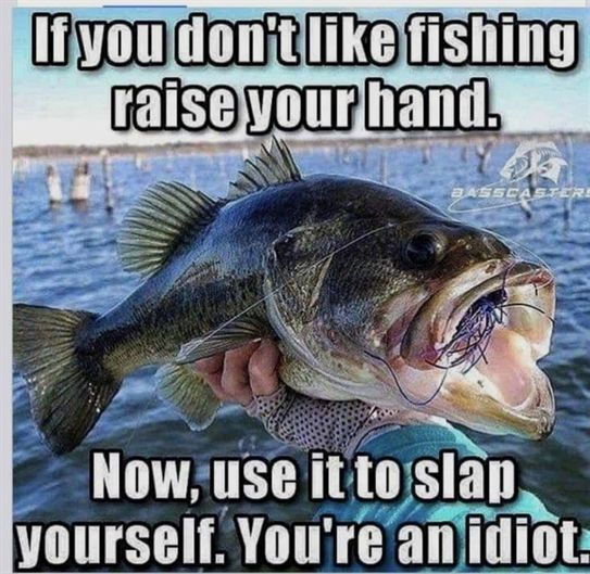 Get Better At Fishing With These Good Tips In 2020 Funny