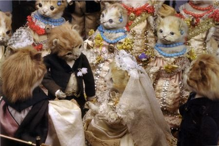 taxidermy - Taxidermy Events. Walter Potter.