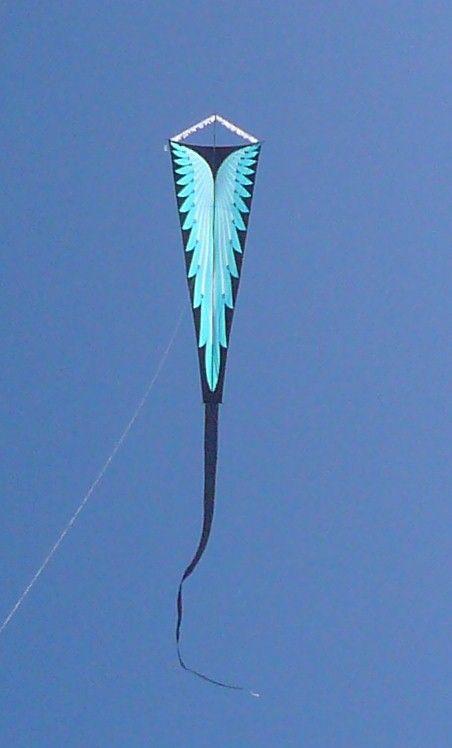 Gomberg Kites: Weekly Update FDKF Kites