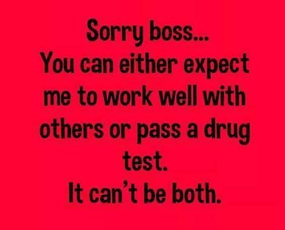 Pin By Michelle On Funny Shit Funny Quotes Work Humor Workplace Humor