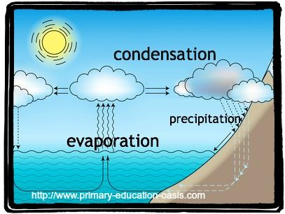 water cycle  cycle for kids and water on pinteresta simple diagram of the water cycle for primary students  http