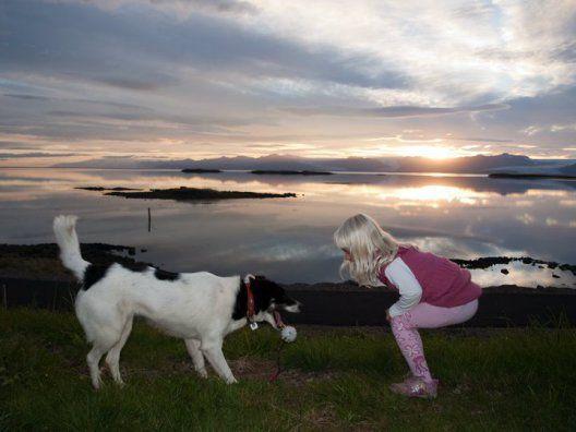 Partez à la découberte de l'#Islande avec cette charmante #maison avec vue sur un glacier! #HomeExchange #chien
