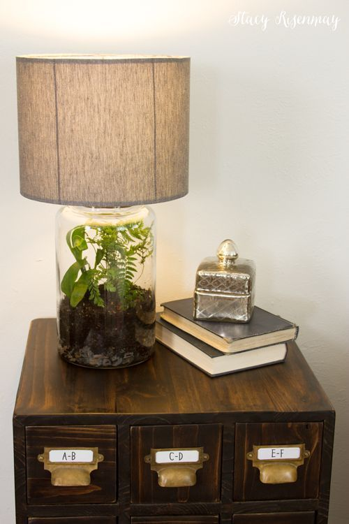 Easy Diy Terrarium Lamp Stacy Risenmay Terrarium Diy Decor