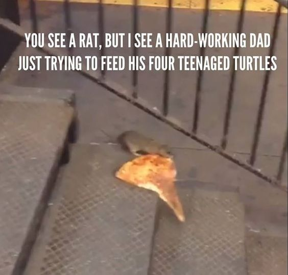 The Only Thing That Could Make Pizza Rat More Viral Is This Ryan Adams Mashup