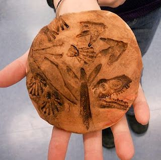 """How cool for younger students!  Making your own """"fossils"""" in red clay!"""