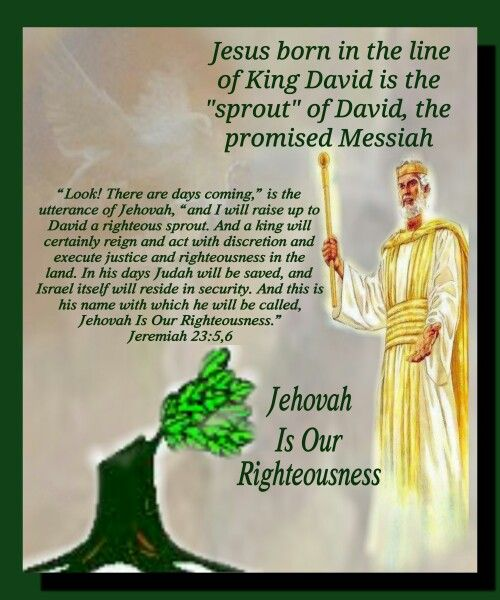 the reign of king david in israel An archaeologist finds spectacular evidence confirming the reign of king david and that non-jews believed in one creator.