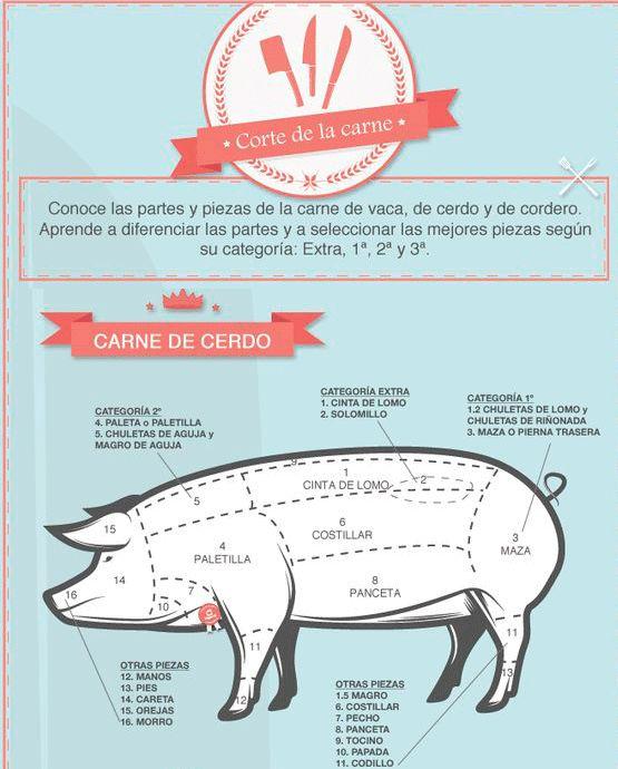 El corte de la carne de #cerdo: Cada cosa en lugar, ahora ya lo sabes 😉 vía @hogarutil