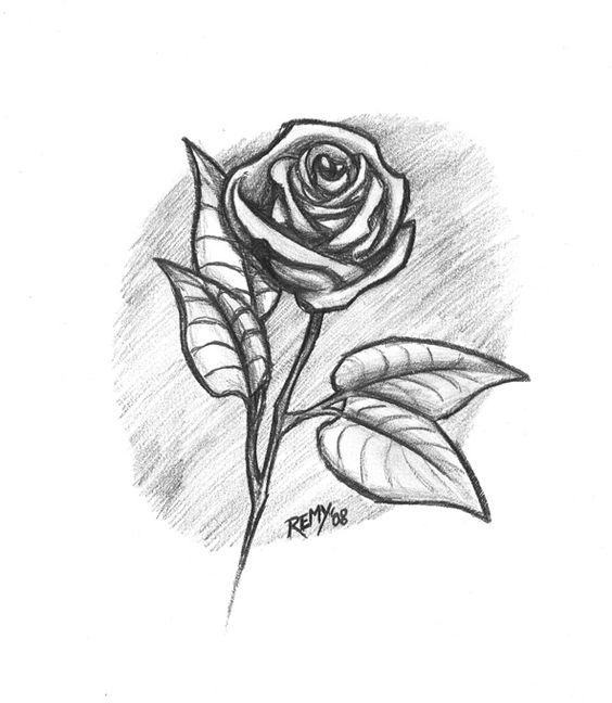 Dibujos de flores para dibujar a lapiz buscar con google for Plantas para dibujar
