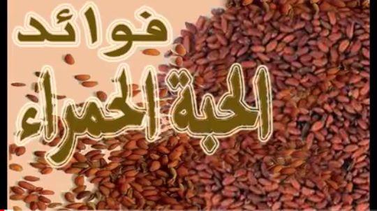 فوائد الحبة الحمراء يعتبر من أغنى أنواع النبات بعنصر اليود المهم الذي يساعد على تحسين عمل الجهاز الهضمي كما يعمل Health Advice Arabic Calligraphy Calligraphy