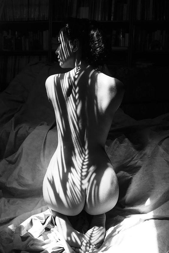 Nackte weibliche Körper, die bedeckt werden durch Schatten. Schatten, die aus der Natur stammen. Das war das Konzept und die Idee hinter diesen Fotos, die Emilio Jiménez aus Madrid hat entstehen lassen. In seiner Serie gibt es sehr viel Haut zu sehen, aber