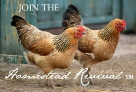 Homestead Revival - blog about living sustainably and taking back the lost arts