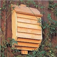 Not sure on the design, but looks like the boy and I will be putting up some bat boxes this year! :D