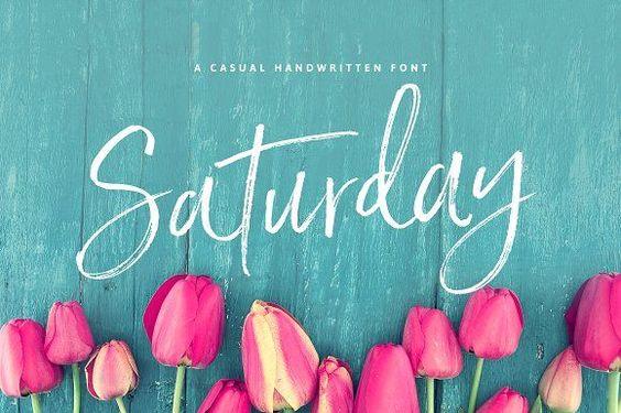 Saturday Script Brush Font by Nicky Laatz