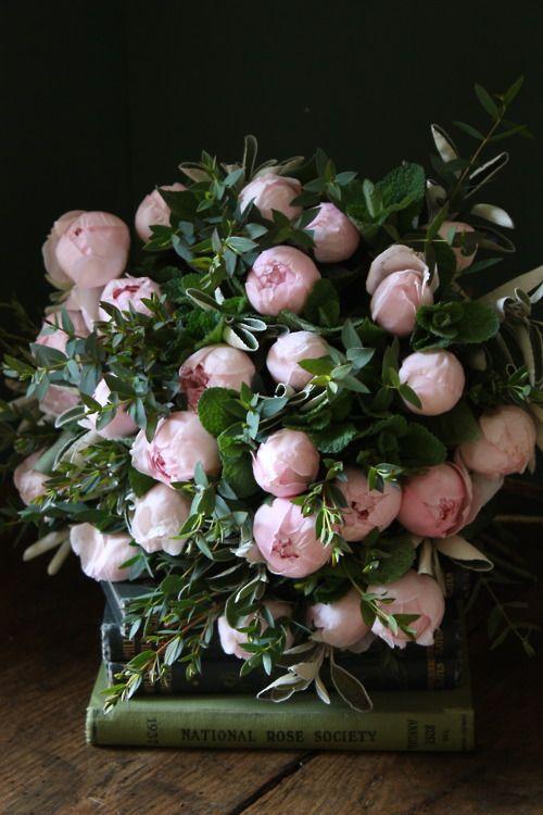 pink petals + books