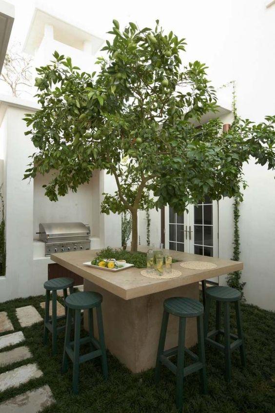 table en béton avec pommier au milieu dans le jardin de style méditerranéen: