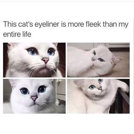 IG: cobythecat   #makeup