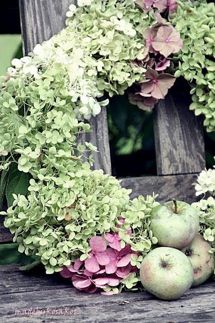 hydrangea wreath: Hydrangeas Apples, Beautiful Autumn, Kransen Wreath, Hydrangeas Minus, Autumn Decor, Spring Wreath, Autumn Wreaths, ̃Hydrangea Wreath