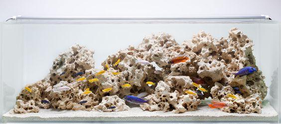 Aquarium Design Group - A Classic African Cichlid Hardscape Like the ...