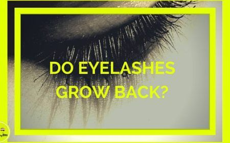 how to make your eyelashes grow back
