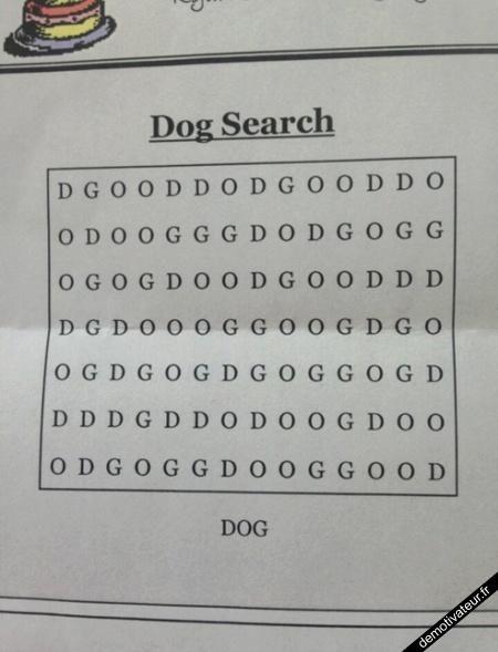 trouvez le mot dog !