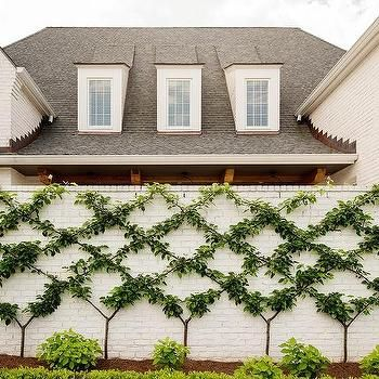 White Brick Home With Gray Roof Shingles Transitional Home Exterior Brick Wall Gardens Painted Brick Walls White Brick Houses