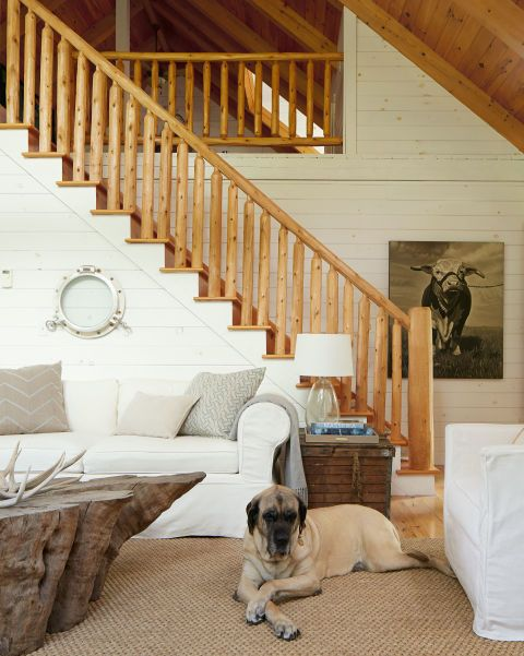 "But the most dramatic change occurred, as predicted, when they painted the walls, leaving select areas (a ceiling here, a banister there) alone for contrast. ""I'm all about white,"" Julie says, summing up her trademark.  In this photo: Baby, a rescue dog, presides over the open-plan living area, where an old porthole frame adds interest to the white walls. Julie stocks a variety of wall art, like this painted portrait of a bull, in her shop."