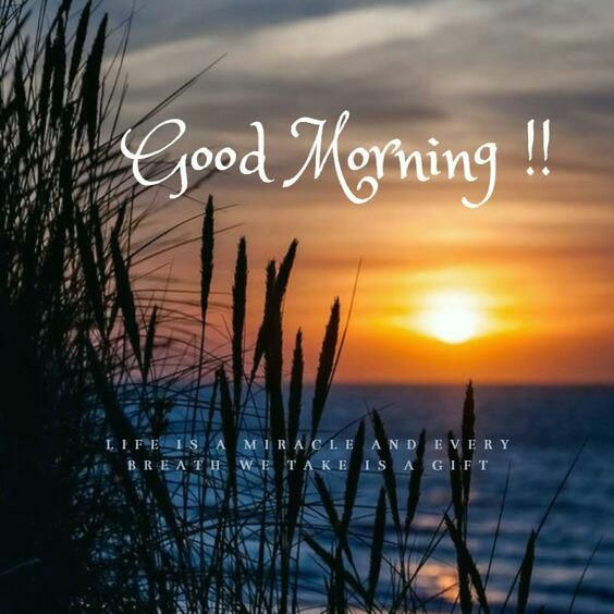 Good Morning Images Good Morning Images Morning Pictures Good Morning Photos Download