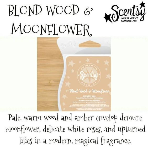 Blond Wood and Moonflower - warm amber, moonflower, white roses, and lilies. #scentsy  #fragrance  #moonflower  #modern
