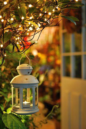 In Front Of The Flower Shop Candle Lanterns Lantern Lights Lanterns