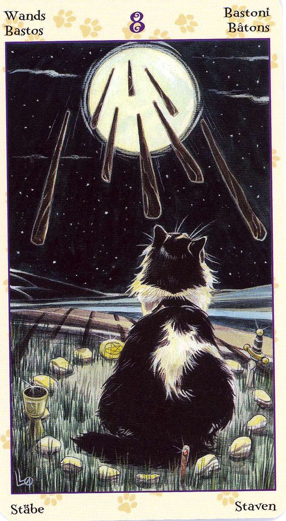 Eights of Wands ~ Tarot of the Pagan Cats deck