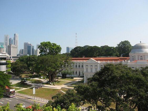 Projetando zonas verdes em Singapura a partir de dados e planificação urbana