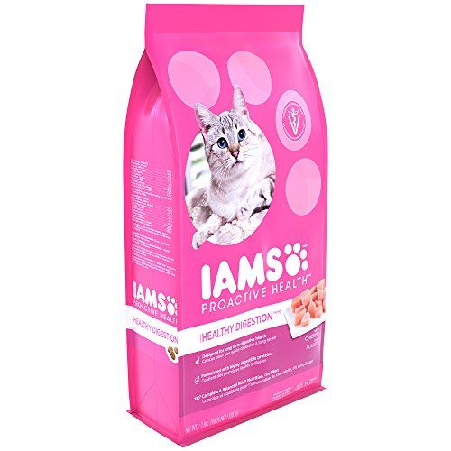Cat Food Sensitive Stomach Iams Proactive Health Healthy Digestion Dry Cat Food 7 Pounds See This Great Prod Sensitive Stomach Cat Food Dry Cat Food Iams