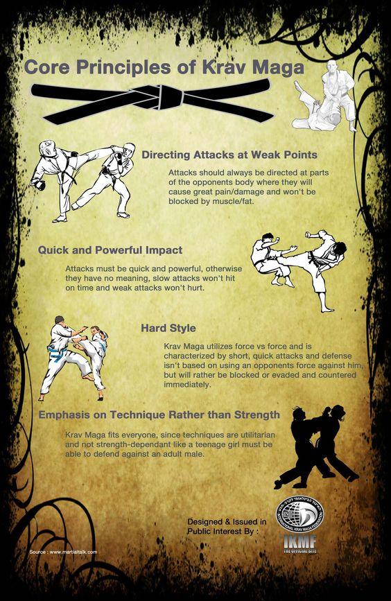 Infographic Core Principles of Krav Maga | Infographics Creator