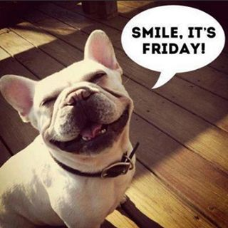 Could this guy be more happy for Friday?  We think he is so cute!  Morrison Dental Group, Williamsburg, VA: