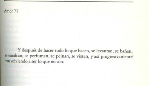 Amor 77, Julio Cortázar
