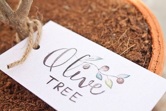 FREE printable: hand-lettered and hand-illsutrated olive tree gift tags