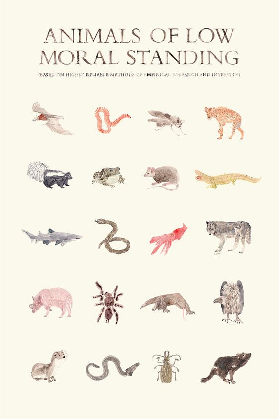#SMO5. Animals of low moral standing: Gift Ideas, Immoral Animals, Low Moral, Standing 25, Morals Low, Scary Animals, Art Illustration