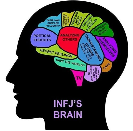 INFJ's brain. Replace cats with love of animals...It's an interesting arrangement. When you see yourself in it, it really confirms your type test results! It's a telling illustration...