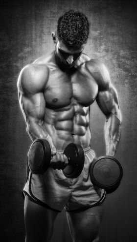 Swole University: 11 Lessons For Bigger Arms   Muscle & Strength http://papasteves.com/blogs/news